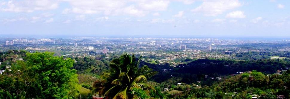 Las vistas de espacios verdes urbanos desde una propiedad afecta positivamente el precio de una vivienda en el mercado de los bienes raíces