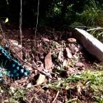 Escombros en Quebrada Ausubo