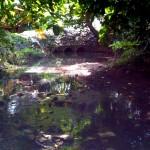 Quebrada Dona Ana (5)